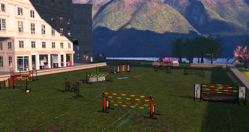 Show Jumping at ~Ladies' Pleasure~