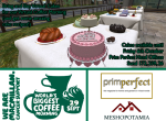 Prim Perfect Coffee Morning